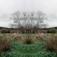 https://mail.josecavana.com:443/files/gimgs/th-22_k.jpg